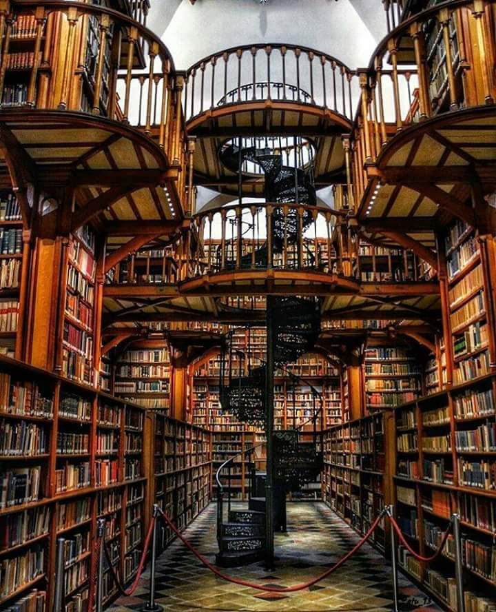 Maria Laach Abbey Library, Germany. Photo by atu13.