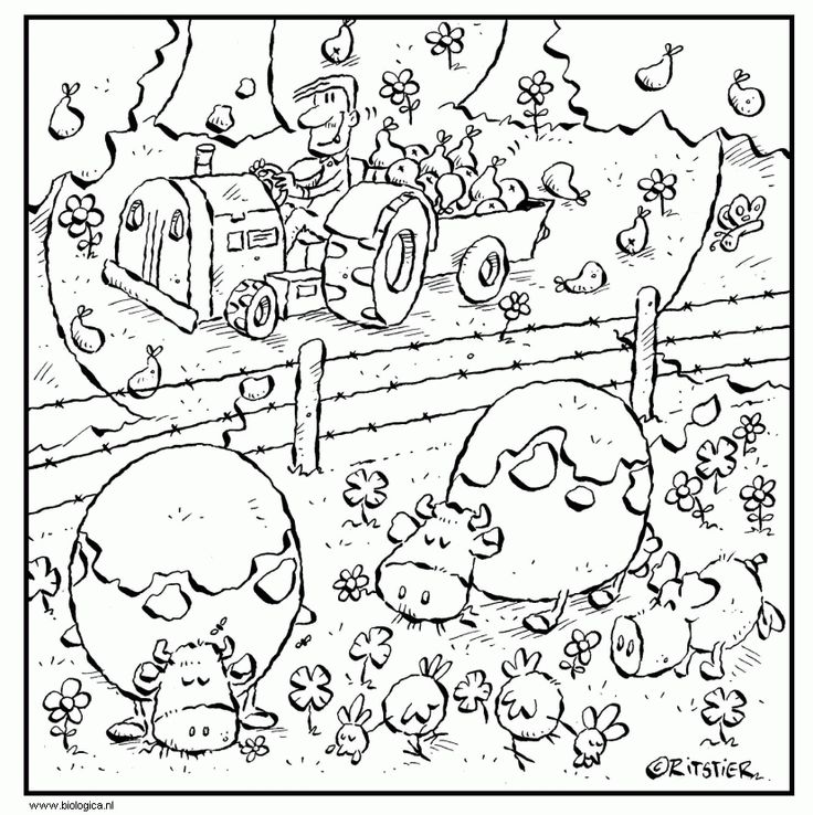 koeien in de wei boerderij kleurplaten
