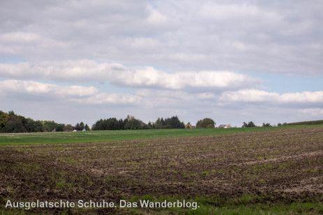 Feld am Obstweg // Der Obstweg in Leichlingen. Oder: Warum die Blütenstadt 'Blütenstadt' heißt. http://ausgelatschte-schuhe.de/bergischer-streifzug-obstweg/
