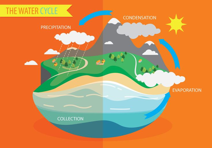 water-cycle-diagram-vector.jpg (1400×980)