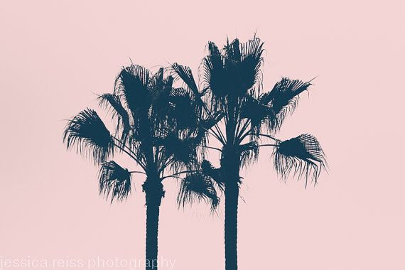 Black and Pink Palm Tree Silhouette Art Print Photography Tropical Girly Home Decor Girls Room Nursery Wall Art Shabby Chic
