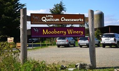 Morningstar Farm, Little Qualicum Cheeseworks and Mooberry Winery, Parksville, BC