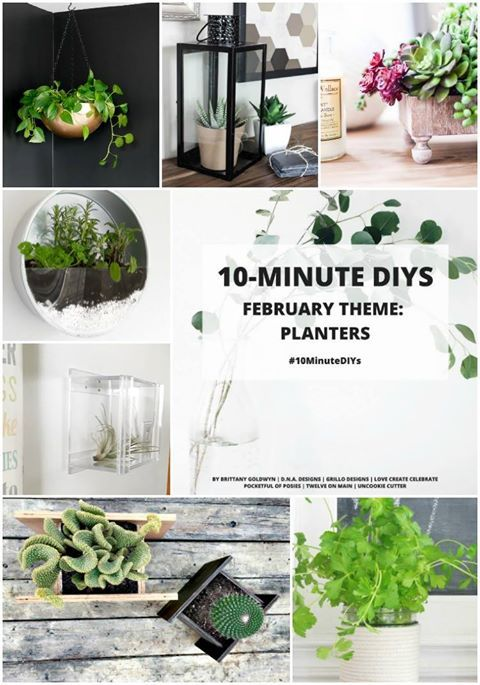 Make An Indoor Herb Planter - In 10 Minutes! • Grillo Designs