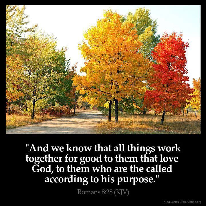 """Romans 8:28 """"And we know that all things work together for good to them that love God, to them who are the called according to his purpose""""."""