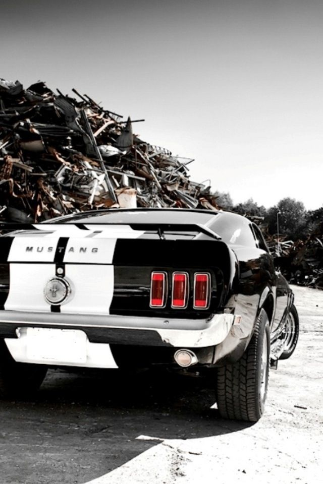 Black and white ford mustang #Ford #Mustang #Rvinyl