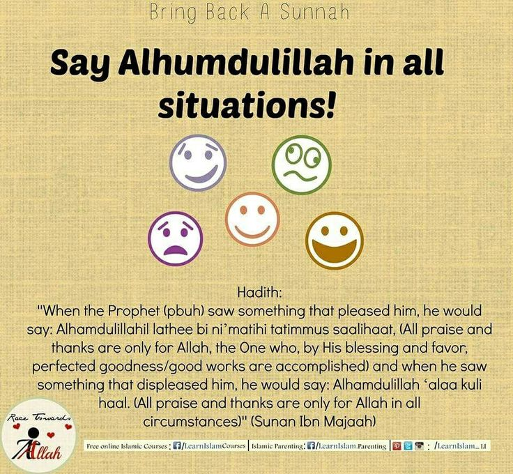 Shukr is one of the Rights of Allah who gave us life, made us Muslim, gave sight, ability to hear, smell taste walk, normally. If we count the favors of our Lord we cannot.   #shukr #beingthankful #thanks #blessings #favour #goodness #alhamdulillah #sunnah #revive #hadeeth #Hadith #learnislam