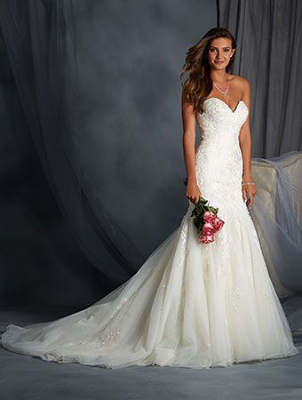 Alfred Angelo Style 2558: fit and flare wedding dress with embroidered lace