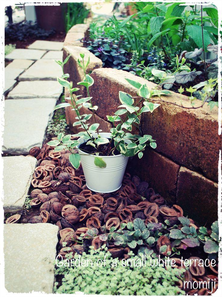 小道 中央花壇 小さな白いテラスの庭