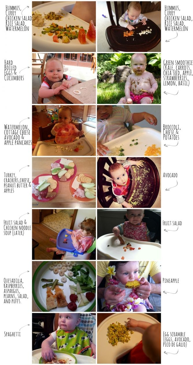 What's your child eating?   Baby Led Weaning  Intuitive Mama - The Intuitive Mama