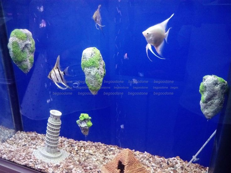 Aquarium Floating Rock Stones Fish Tank Decoration Avatar