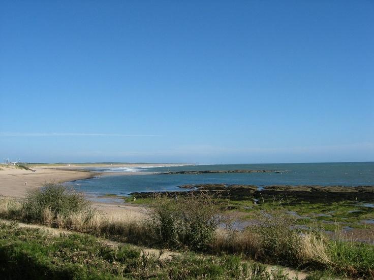 Marais-Girard - Brétignolles-sur-mer - Vendée