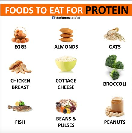 Foods to eat for Protein