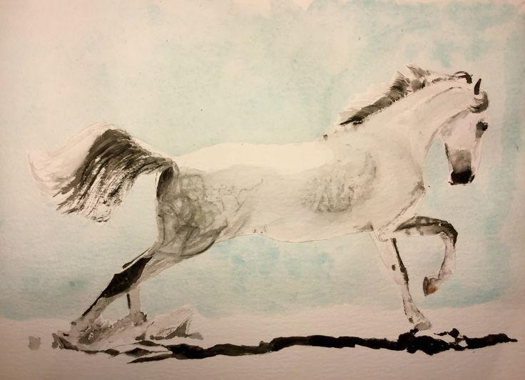 #Lipizzaner Stallion  #art #watercolour #horse