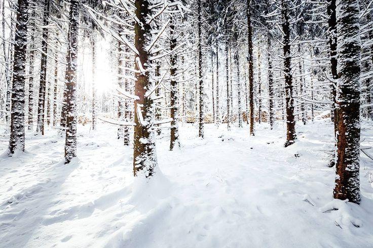 Winterwanderung in Braunlage