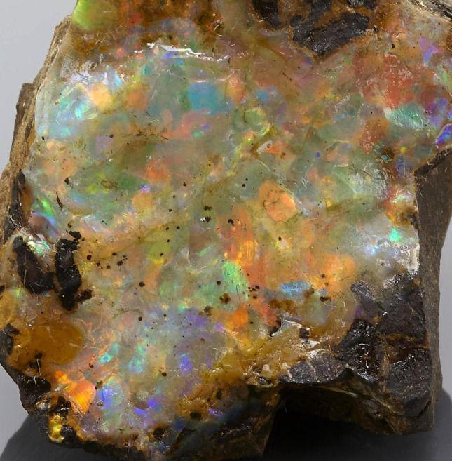 Boulder Opal - Queensland, Australia