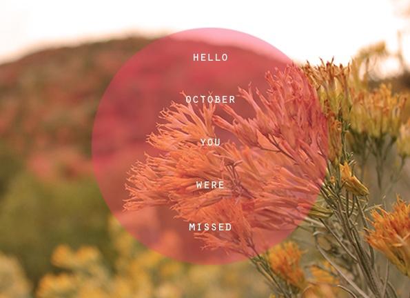 Best 25 Hello October Ideas On Pinterest