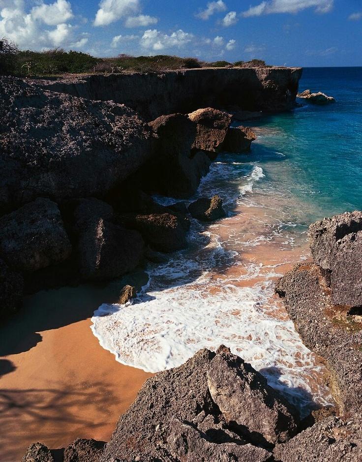 Santa Barbara Beach Resort Curacao Day Pass