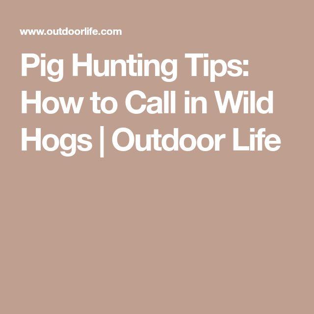 how to make a wild pig call