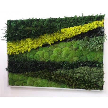 Moss Wall Art for Interior Use, Designed and Made by Bright Green                                                                                                                                                                                 More
