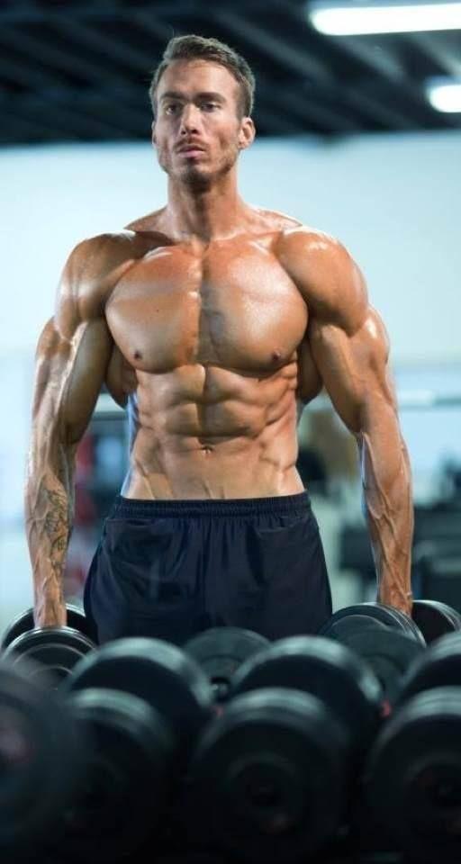 Fitness Anatomy