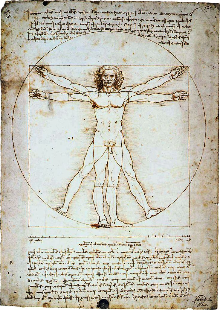 """The Vitruvian Man by Leonardo da Vinci The golden ratio or as Da Vinci called """"divine Proportion"""" which he featured in many of his paintings. He did entire explorations of the human body and the ratio of lengths of various body parts."""