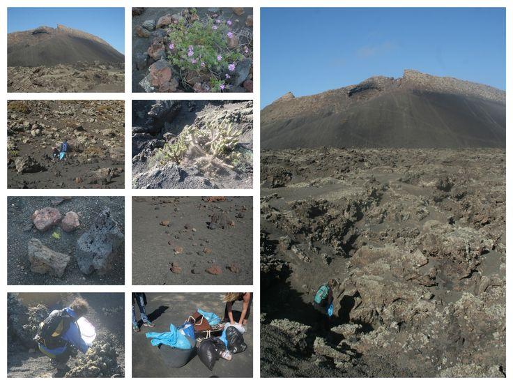 Iniciativas empresariales de conservación de espacios naturales protegidos en Lanzarote. Sinergia Insular.