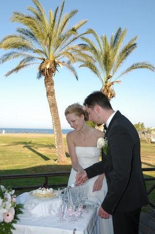 cutting the cake under the palms