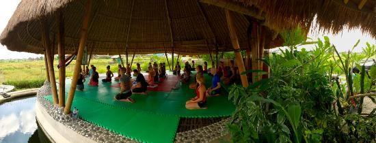 Bild von Bali Green Life, Kerobokan: Be Fit - Schauen Sie sich 2.227 authentische Fotos und Videos von Bali Green Life an, die von TripAdvisor-Mitgliedern gemacht wurden.