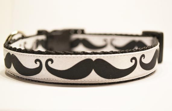 Personalized Mustache dog collar  made to order by Charmanique, $16.00