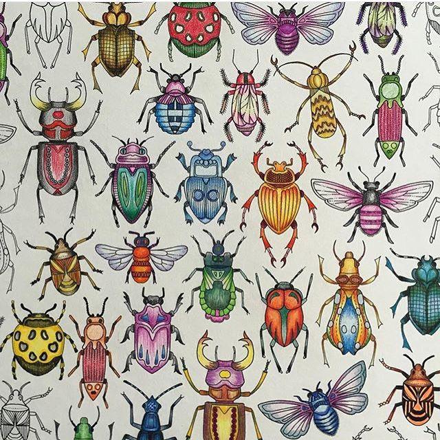 Nice Sekamojal Garden BugsBeetlesSecret GardensColoring BooksJohanna