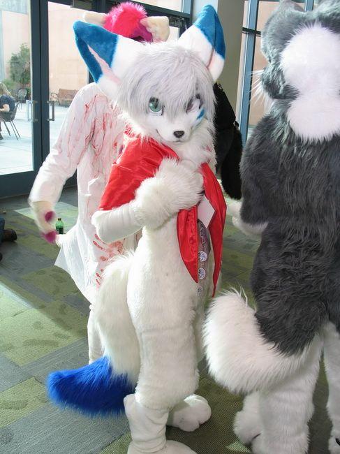 fursuits | Furry Costumes Fursuit