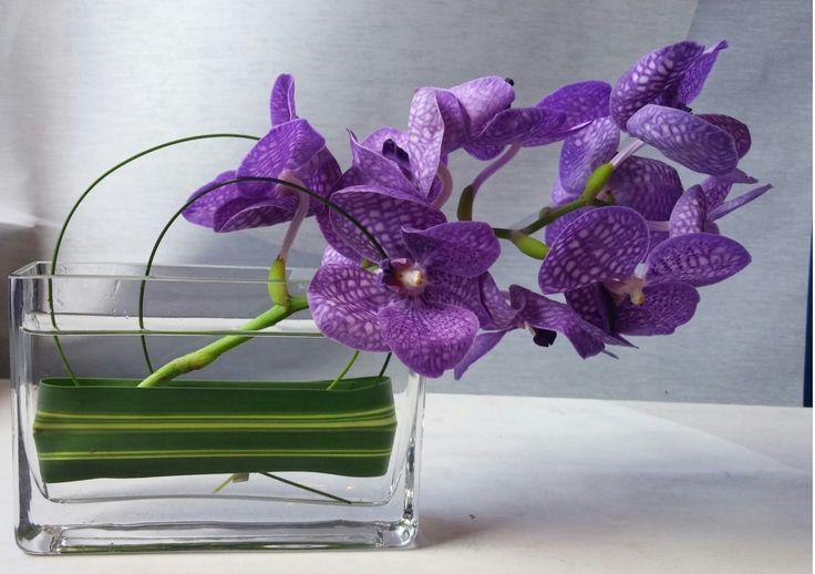 Best cocktail table centerpieces images on pinterest