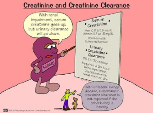 Creatinine and Creatining Clearance nursing mnemonic