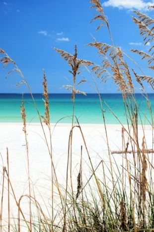 Destin, Florida The most beautiful white sand beaches I've ever seen. The emerald coast. Blue Green water. I will go back as often as I can'