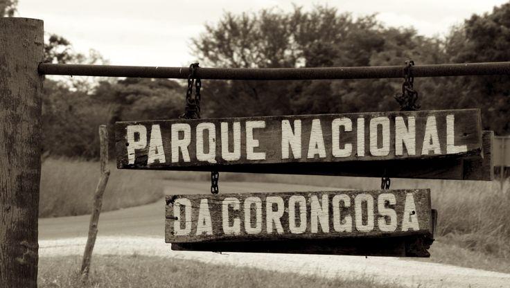 Parque Nacional do Gorongosa