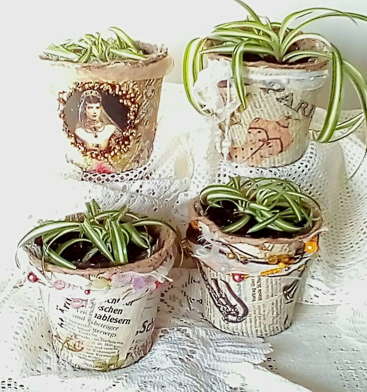 Торфяные горшочки, декор цветочных горшков.