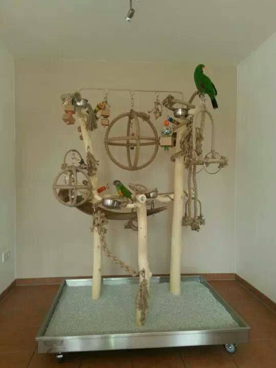 This is an amazing bird stand! I would love to get it in the future.