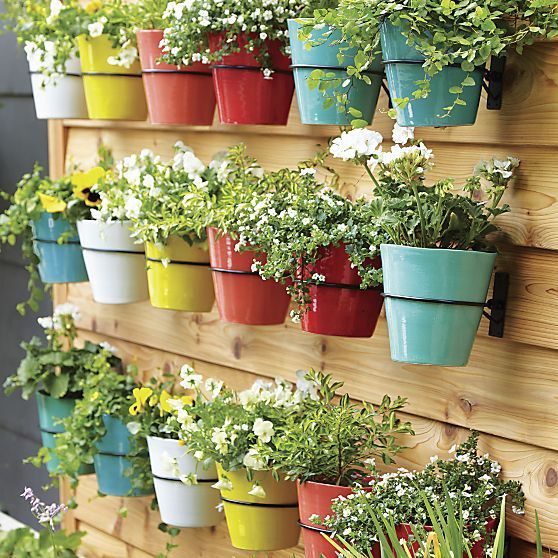 Wall Planter Hook - Crate and Barrel | Gardens, Pool ...