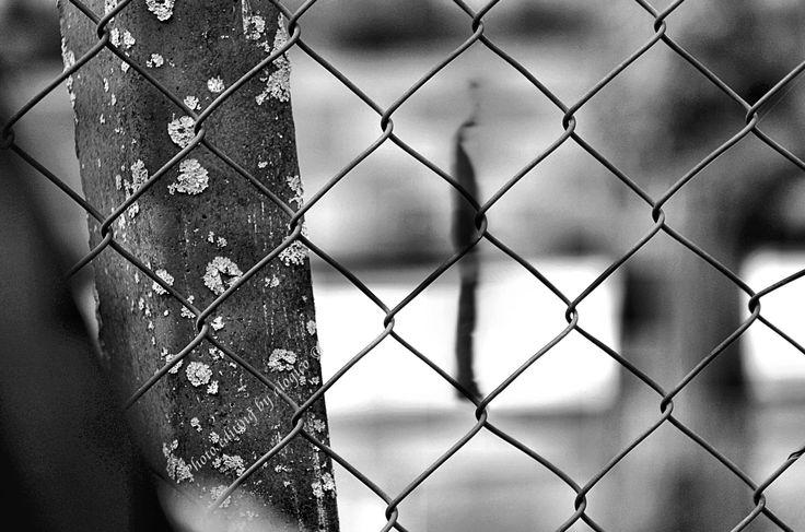 """— """"Distances"""" —   Who lives, when living, no longer sees himself: he lives only. If one can see one's own life, it means you are no longer living their own life: he suffers; and drags... (L. Pirandello, """"The Wheelbarrow"""")   (Chi vive, quando si vive, non vede se stesso: egli vive solo. Se uno può vedere la propria vita, è segno che non la vive più: la subisce; e la trascina)   ✔ https://500px.com/alogico/marketplace ✔ alogico@libero.it"""