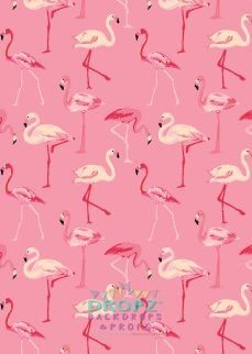 Pink Flamingo's  #backdrop #backdrops #photobackground #cakedrop #studiobackdrop #backdropsaustralia #photobackdrop #dropz #scenicbackground #vinylbackdrop