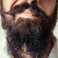 A 30-Day Plan for the First-Time Beard Grower | Birchbox