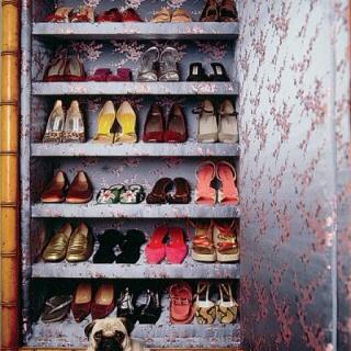 Bromeliad: Closet Inspiration   Organizing Shoes And Purses   Fashion And  Home Decor DIY And Inspiration