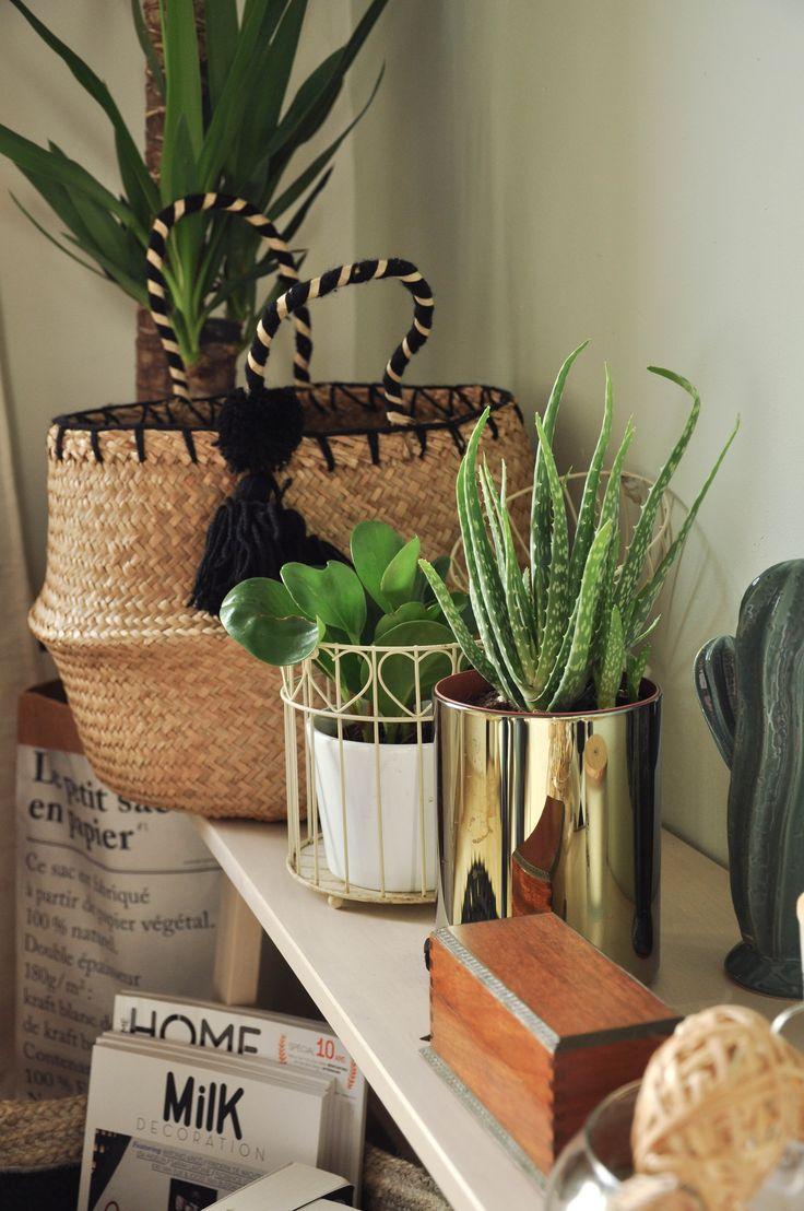 Chambre-Boheme-Plantes et paniers Maison du Monde