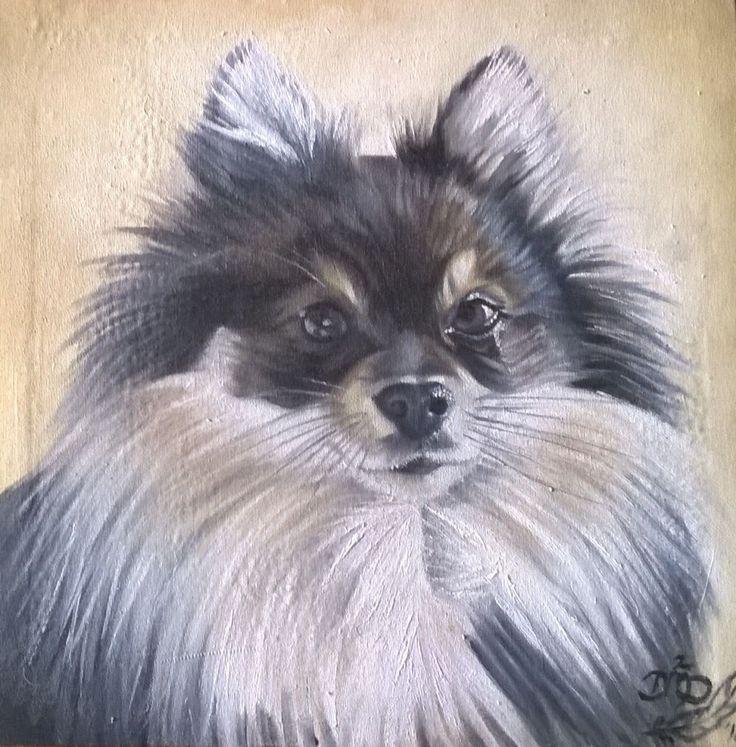 Pomeranian 2 {Commission} ~ Block Mounted Framed Oil Painting by Dawn Du Preez #DawnDuPreez