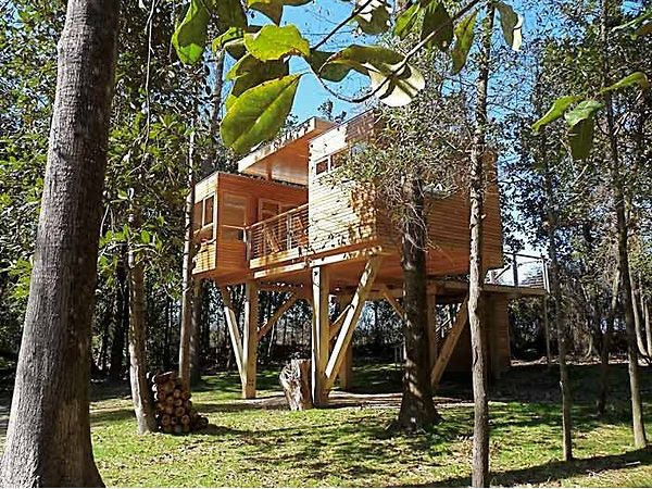 Boutique Hotels Trend Treehouses By Baumraum