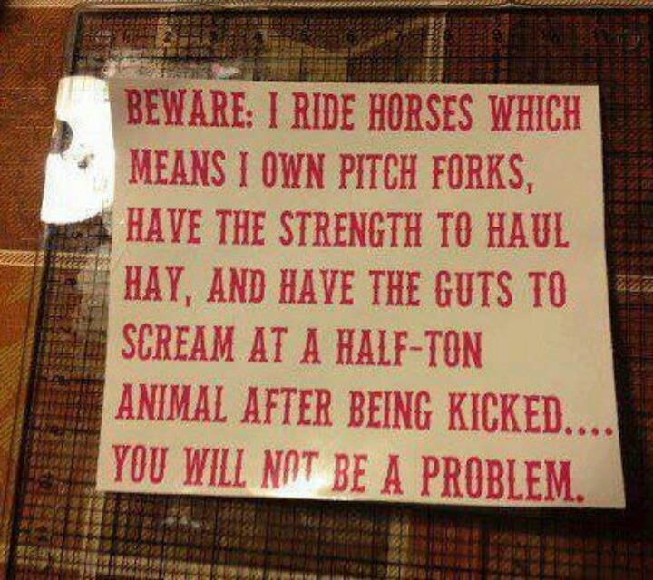 Women Arena Quotes: 1000+ Images About Cowgirl & Cowboy Quotes On Pinterest