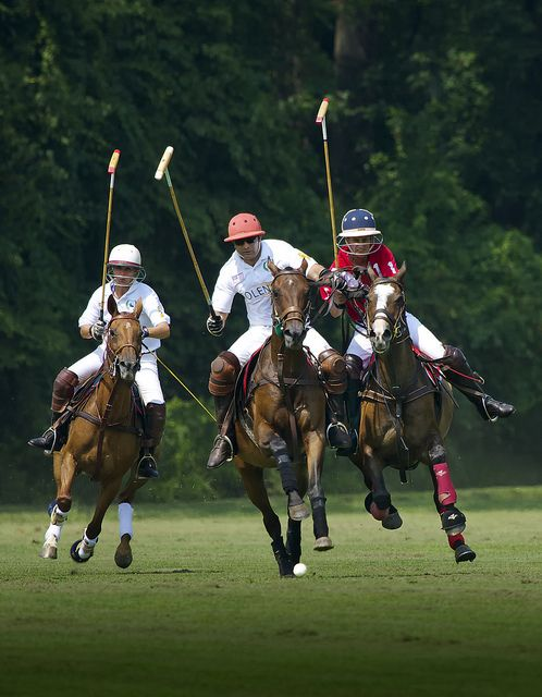 Here's Tom playing polo! He may be an arrogant brute, but I still love him. :)