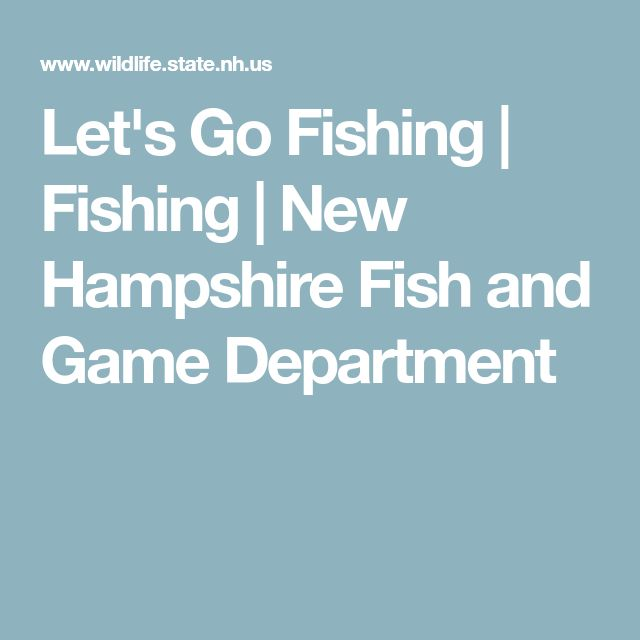 Let's Go Fishing | Fishing | New Hampshire Fish and Game Department