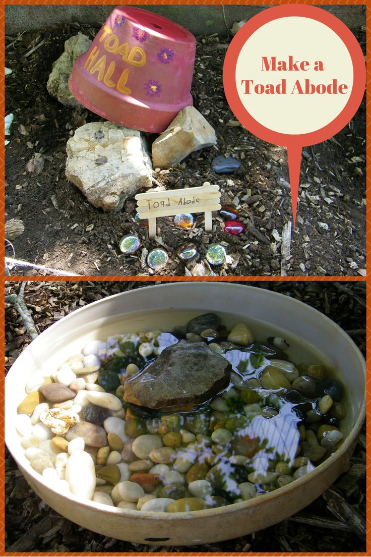 (link) DIY: Making a Toad Abode  ~ for more great PINs w/good links visit me @djohnisee ~ have fun!