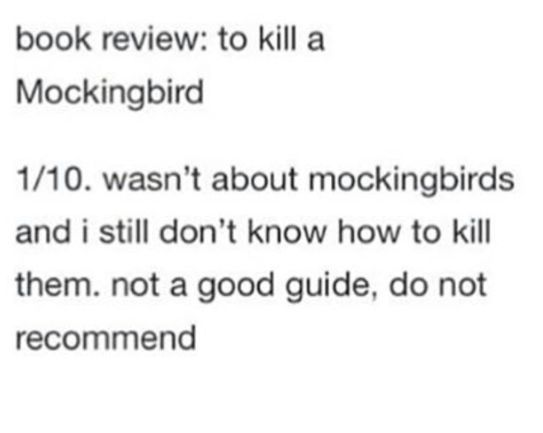 provincialism in to kill a mockingird essay An in-class essay i wrote in grade 10 englishto kill a mockingbird: racism and its destruction of humanity there are many destructive forces in this world that may destroy our humanity, beat d.